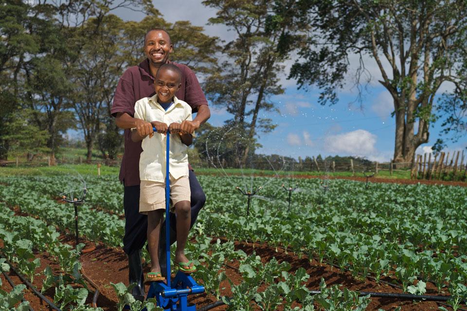 trouver des solutions innovantes pour aider les familles les plus pauvres à se nourrir